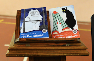 QuattroZampe: Feed a Cat – Read a Book