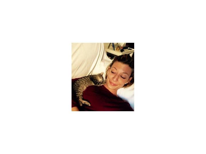 QuattroZampe: I primi giorni di gatto, di Maria Silvia Avanzato