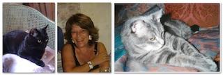 QuattroZampe: Un'intervista… felina