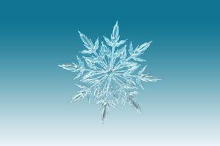 Una Storia per Natale: Snowflakes, di Maddalena Cafaro