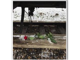 Il Giorno della Memoria, di Mariangela Camocardi