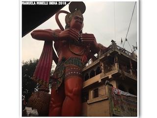 Diario di Viaggio di Manuela Minelli: India, il Festival degli Elefanti