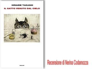 Recensione di Nerina Codamozza: Il gatto venuto dal cielo, di Takashi Hiraide